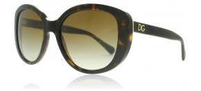 Dolce and Gabbana - Dolce and Gabbana 4248 Solglasögon Havana 502 T5 Polariserade 55mm